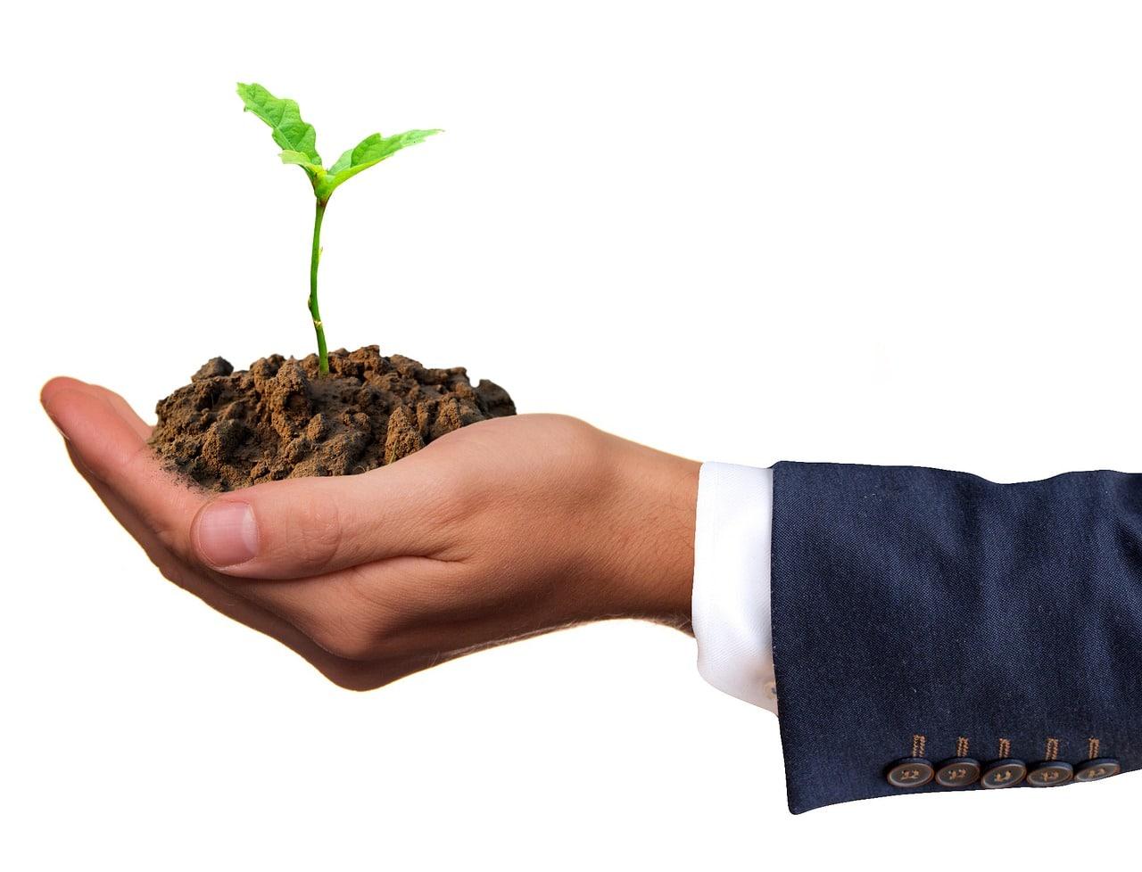 Nurturing green business principles through employee engagement programs