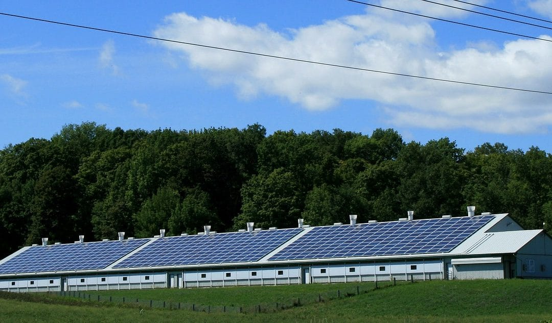 6 Steps to Small Business Sustainability! solar power barn