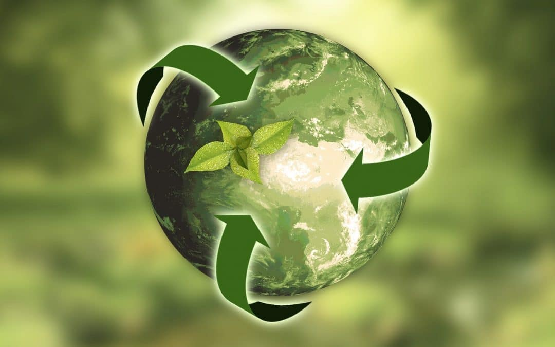 Embracing Business Sustainability Has Challenges and Rewards