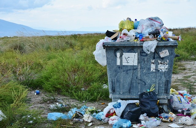 """alt=""""Single use plastic containers are an environmental disaster filling our landfills and soiling our wilderness"""""""