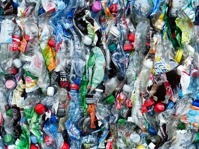 Can Committed Recycling Make You An Environmentalist?