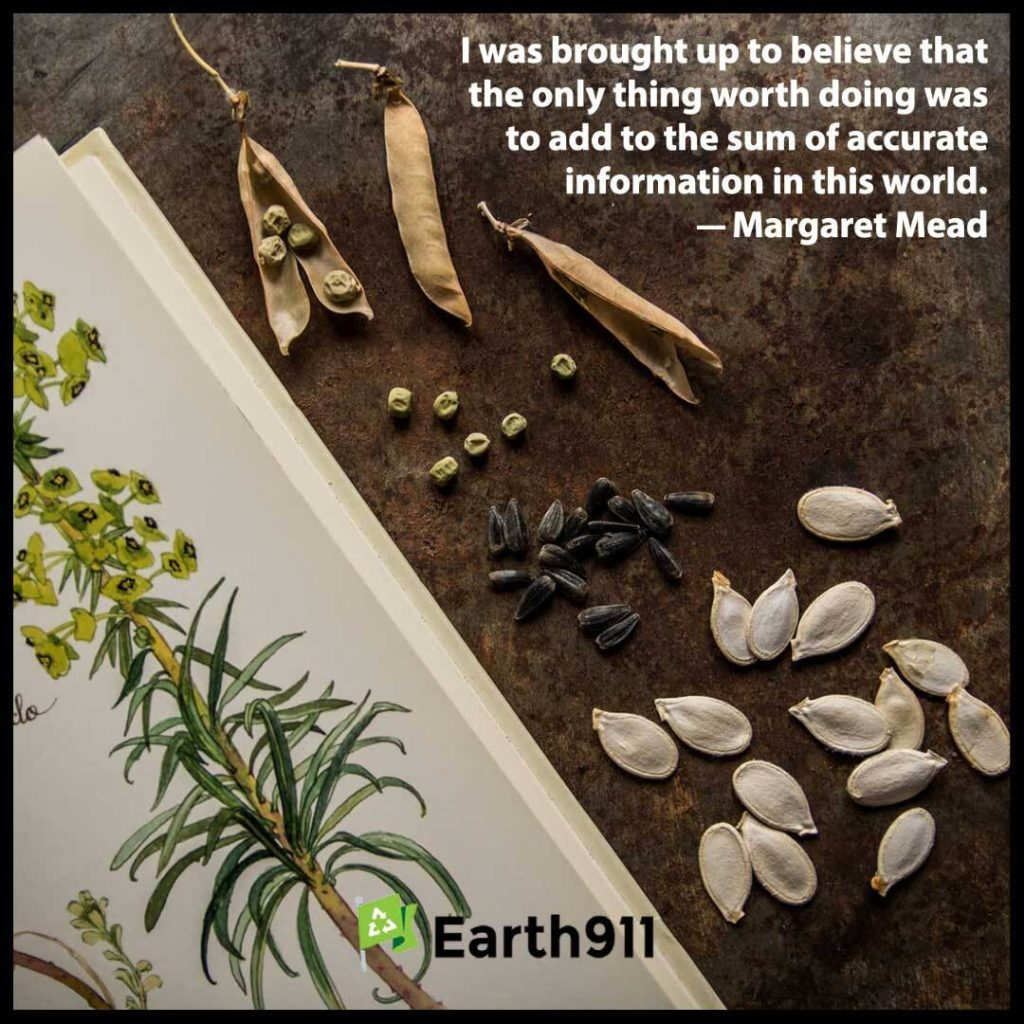 Earth911 Inspiration: Add To The Sum Of Accurate Information