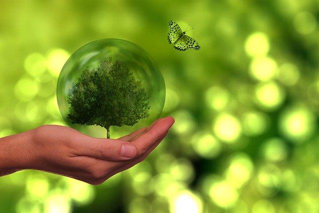 How To Spot Greenwashing