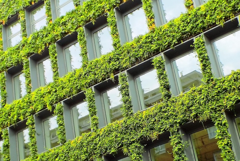 Urban Greening Post Covid 19: What It Means For Business
