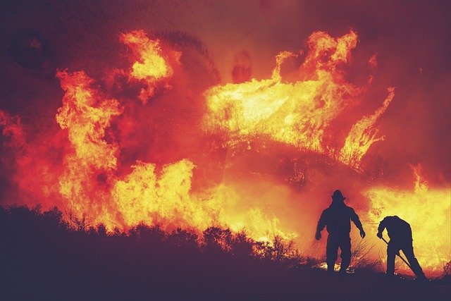 Wildfire Prevention Where Safety And Environmentalism Connect