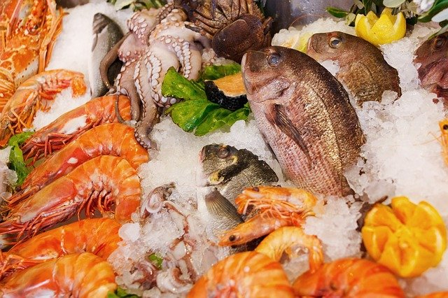Good, Better, Best The Environmental Impact Of Seafood