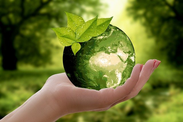 Greenwashing The Lesser Of Two Evils