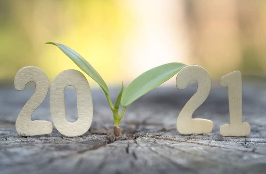 Predicting 2021's Environmental Trends P