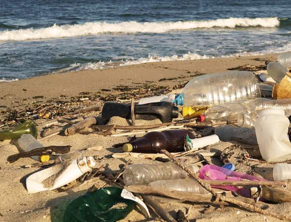 can we break free from plastic pollution?